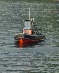 rescue rib on west coast